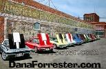 Click here to visit Dana Forrester's website...